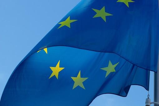 La vicepresidente Viale martedì al parlamento europeo