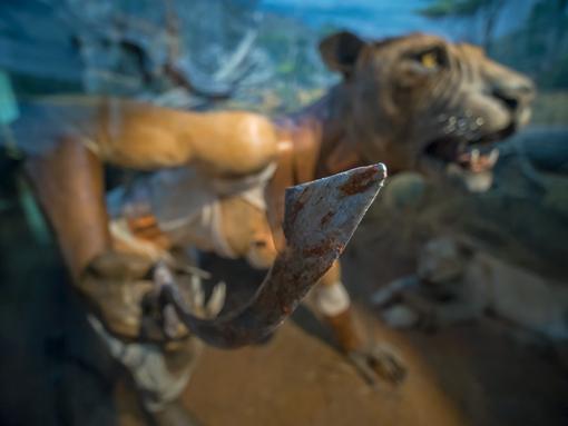 Prosegue fino a febbraio la mostra 'Mythos' al Museo di storia naturale