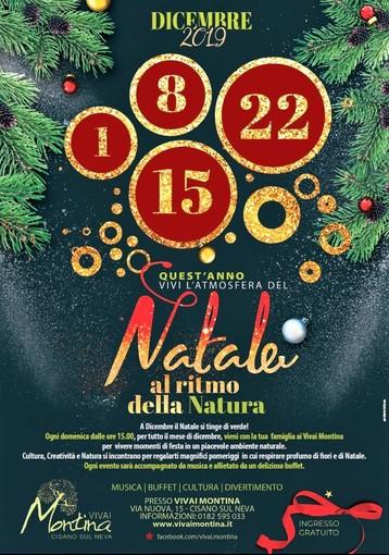 Ai Vivai Montina di Cisano il Natale segue il ritmo della Natura