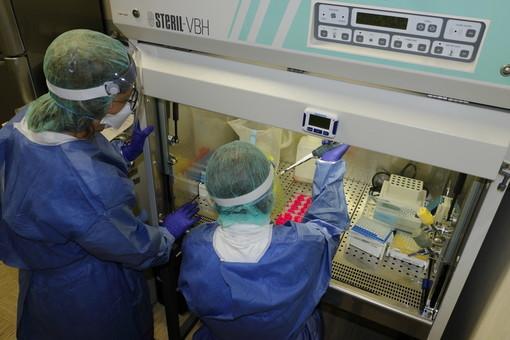 Coronavirus, Regione Liguria: entro fine agosto test sierologici su polizia