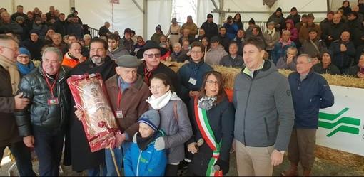 A Carrù torna la magia della Fiera Nazionale del Bue Grasso: ottanta i capi in mostra nella prima giornata di premiazione