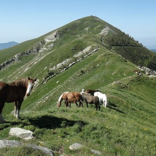 Recupero della sentieristica, la Regione Liguria è in prima linea
