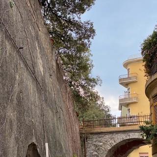 Pegli, gli alberi di Villa Pallavicini saranno potati dal Comune entro fine aprile (FOTO)