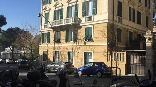 Alberi sostituiti in corso Carbonara, interrogazione di De Benedictis (FdI) in Consiglio comunale: protesta degli ambientalisti per i giardini di Brignole (FOTO)