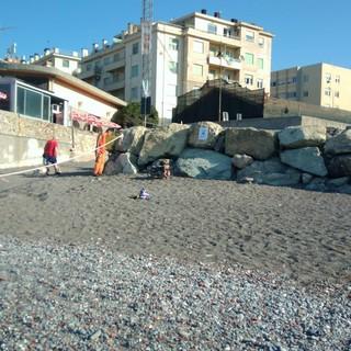 Pronta la 'spiaggia Bau' a Sturla, obbligatorio essere civili