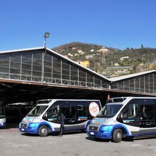 """""""Free Bus in the Park"""": al via il trasporto gratuito per i Comuni dell'entroterra"""