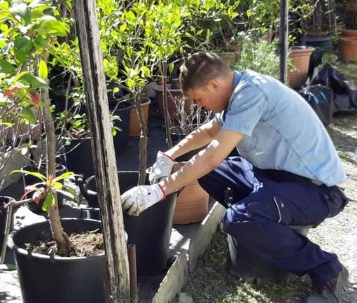 Una giornata di orientamento ed avvicinamento al lavoro per i giovani a villa Ronco