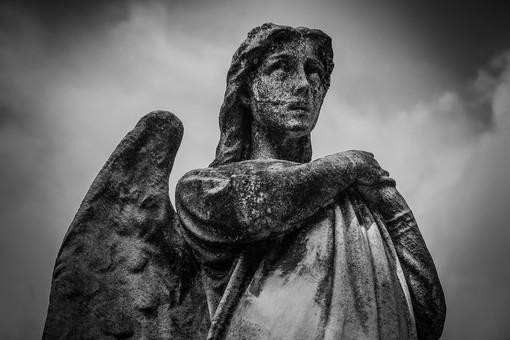 Sampierdarena: al Cimitero della Castagna il sabato ecologico