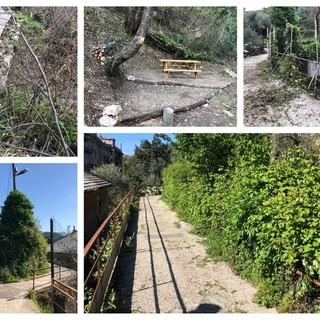 L'Acquedotto storico di Genova rinasce grazie ai volontari (FOTO)