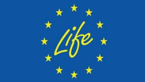 Programma LIFE: l'UE investe 121 milioni di € in progetti a favore dell'ambiente, della natura e dell'azione per il clima