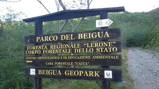 Parco del Beigua: finanziato progetto da 458.000 euro per le Foreste Demaniali
