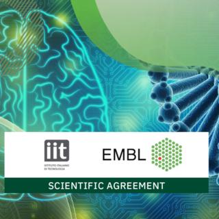 Unire le forze per espandere la ricerca: siglata intesa fra il Laboratorio Europeo di Biologia Molecolare e l'IIT