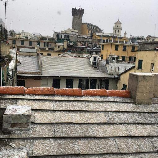 """""""Genova Low"""": in arrivo una tempesta di neve sulla Liguria"""