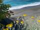 Meteo: giornata stabile e soleggiata sulla Liguria
