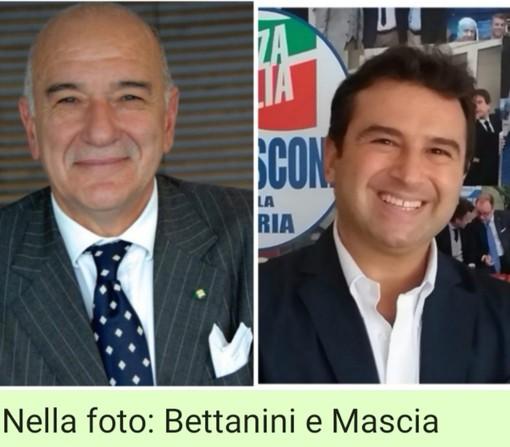 """Mascia (Forza Italia): """"Salviamo il mandala della compassione"""""""