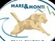 Brevetto Nazionale di primo soccorso: domenica 20 giugno Mare & Monti Team Cinofilo Genova organizza l'evento
