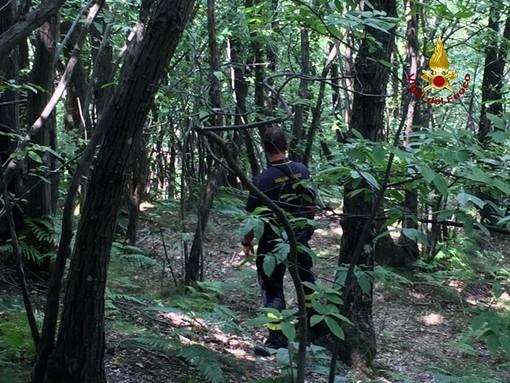 Tiglieto: uomo disperso nei boschi