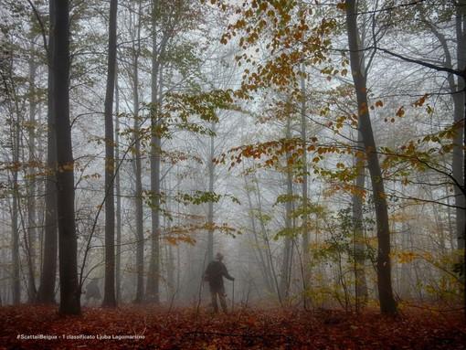 #ScattailBeigua: gli scatti vincitori più belli d'autunno