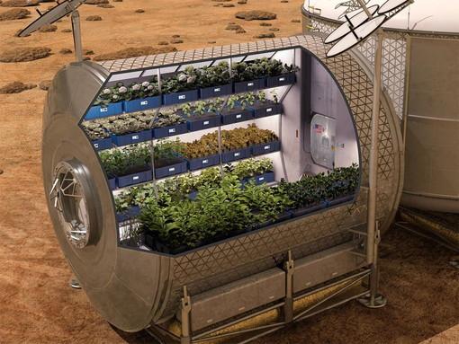 Al Festival dello Spazio di Busalla i progetti per la creazione di coltivazioni sulla Luna e su Marte