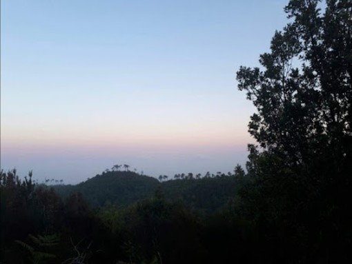 Passeggiando al chiaro di luna lungo il Sentiero Liguria