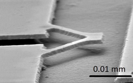 Spim mette a punto nuovi sensori nanoelettromeccanici per lo studio del cervello