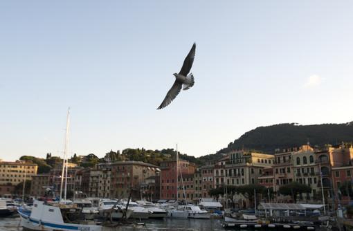 Santa Margherita: tutti gli eventi estivi