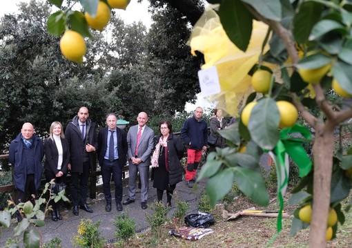 """""""Coltiviamo il cuore"""" e """"Orto in ospedale"""": progetti congiunti tra Coldiretti Liguria e il """"Gaslini"""""""