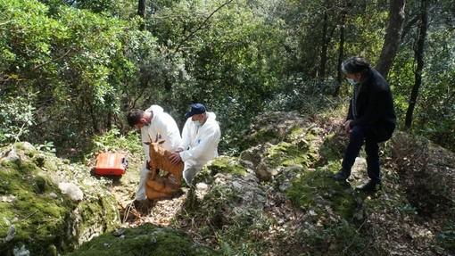 Anello escursionistico di Nozarego a Santa Margherita Ligure: inaugurazione il 27 maggio