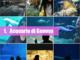 Il Comune di Genova sempre più social sbarca su Instagram (FOTO)