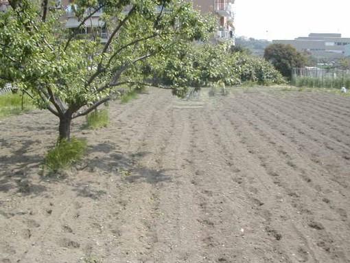 La Liguria raggiunge gli obiettivi di spesa previsti per il 2018 sul PSR (Piano di Sviluppo Rurale)