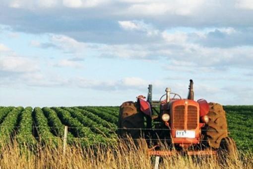 """Le paure di Coldiretti: """"Troppo 'overbooking' nei fondi PSR... Riusciranno le aziende agricole a terminare i progetti di rinnovo?"""""""
