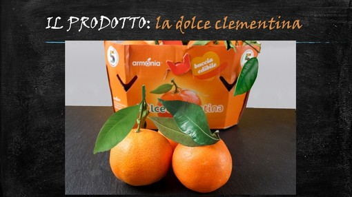 Felici & Veloci, la nuova ricetta AutograFata di Fata Zuccchina: la clementina donata