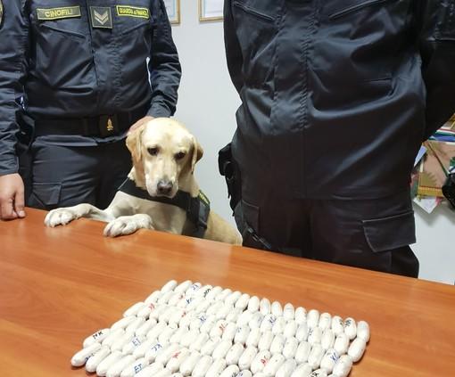 Cani antidroga in azione: sequestrate due spedizioni di eroina e marijuana