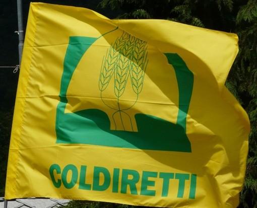 Coldiretti, tutela Made in Italy: il 96% degli italiani plaude l'etichettatura obbligatoria