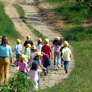 """Fase 3: dai campi il nuovo """"welfare verde"""" in aiuto a famiglie e persone in difficoltà"""
