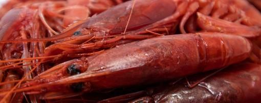 """Confsal Pesca: """"Bene non paralizzare le imprese ittiche liguri e comunicare come si può continuare a lavorare in emergenza"""""""