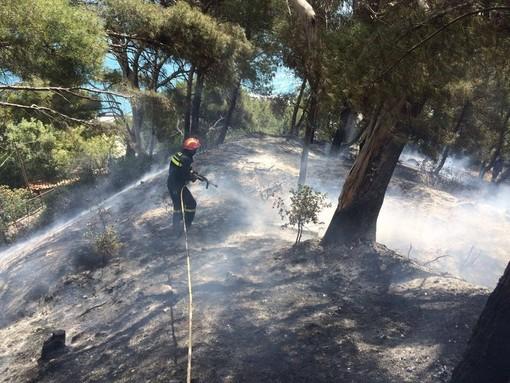 Incendi boschivi: cessato stato di grave pericolosità