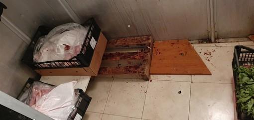 Scattano i controlli sui negozi di Sampierdarena e centro storico: sanzioni e sequestri
