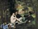 Oggi è la Giornata internazionale del picnic: finalmente un piacevole momento di relax