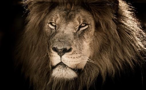 Capo Noli, la leggenda del leone di pietra