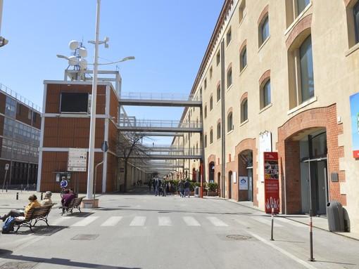 Pianificazione territoriale e sinergia tra città-porti nel Mediterraneo