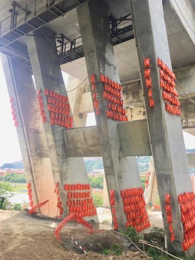 Proseguono le operazioni preliminari per la demolizione delle pile 10 e 11