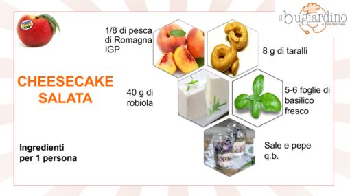 Felici e veloci, le nuove (video)ricette di Fata Zucchina: cheesecake salata
