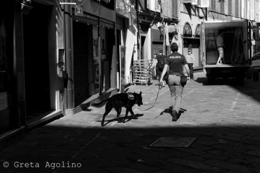 Denunciato un pusher dei vicoli di Genova grazie al cane antidroga