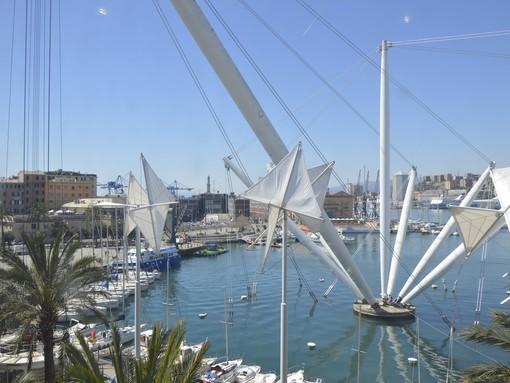 Meteo: cielo sereno e vento di burrasca forte a Genova