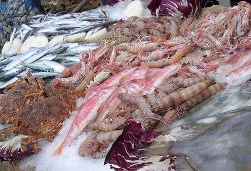"""Settore ittico, Coldiretti: """"Sicurezza prima di tutto, evitare il pesce importato"""""""