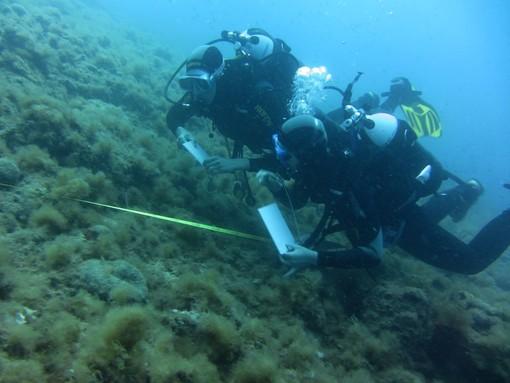 L'amministrazione comunale di Rapallo incontra i centri immersioni cittadini