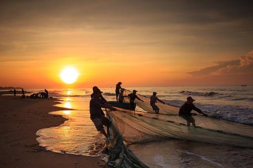 Pesca sostenibile: la Commissione fa il punto sui progressi dell'Ue ed avvia una consultazione sulle possibilità di pesca per il 2022