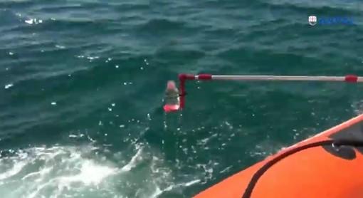 Mare inquinato, analisi Arpal sfavorevoli per la spiaggia di Murcarolo (VIDEO)