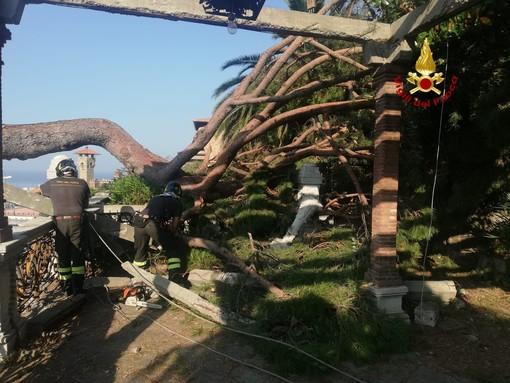 Intervento dei vigili del fuoco per un ramo caduto: danni a un'abitazione privata e a un veicolo parcheggiato